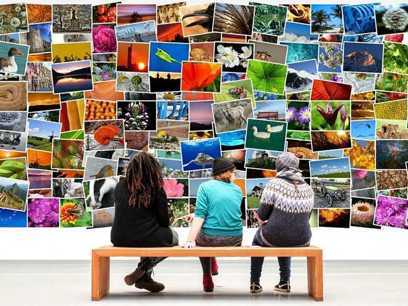 fotos-ordenen-pixabay-yolanda-lippens-yory